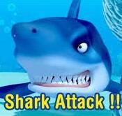 Squad 7-9 Shark Attack Finale image